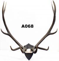 Auction 74A